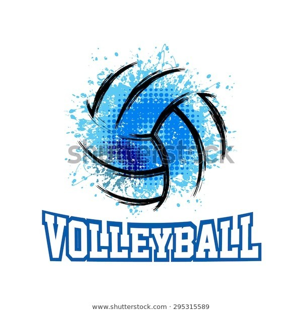 Picture of volleyball